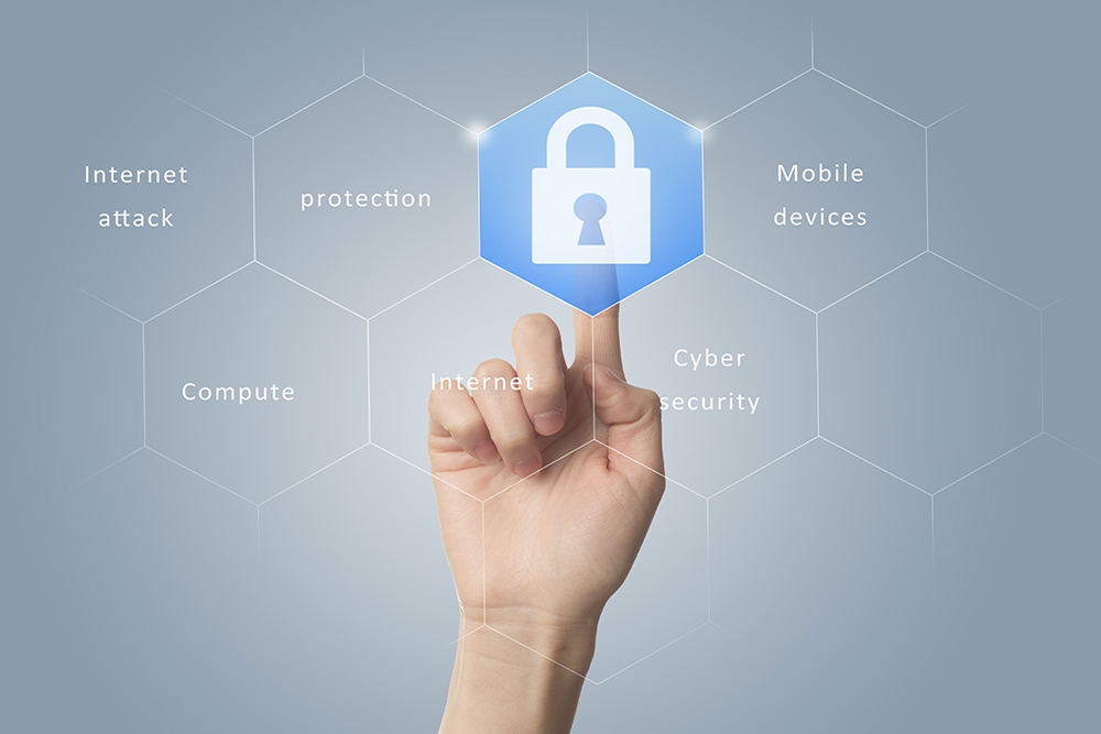 Network and Security Services